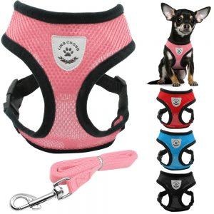 Soft Breathable Nylon Dog Harness and Leash Set