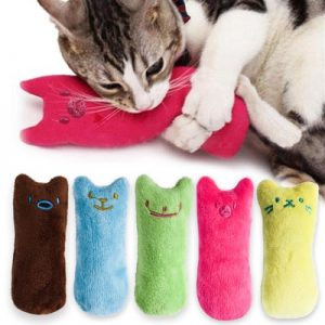 Cat's Funny Catnip Plush Toy