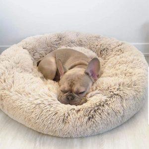 Pet Beds, Mats & Houses