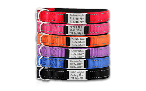 Custom Pet Collars - Dog Collars - Cat Collars
