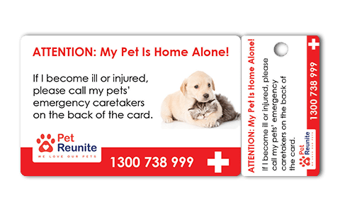 Pet Net ID In Case Of Emergency Card