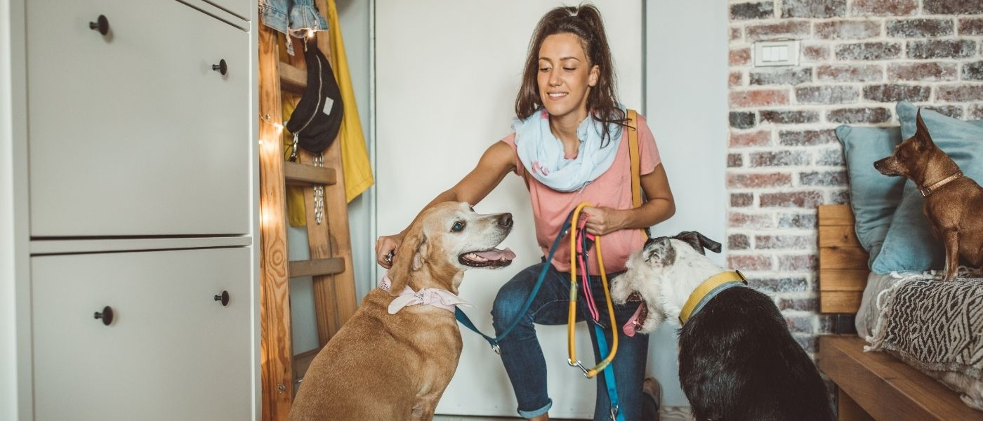 5 Tips For Choosing A Pet Sitter