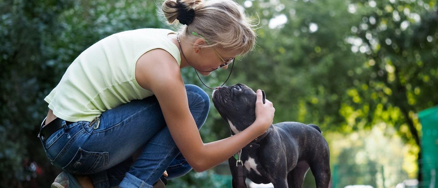5 Tips For Picking The Best Dog Walker