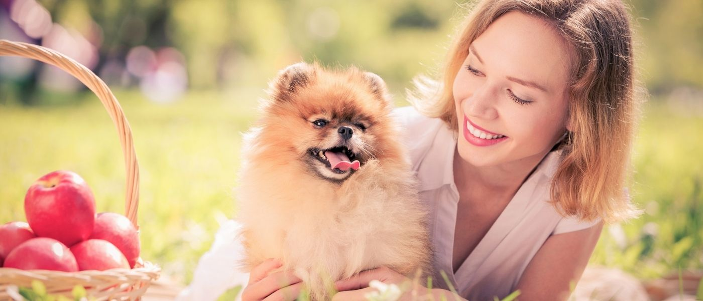 6 Steps To Having A Happier Pet