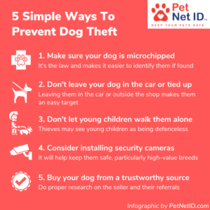 Infographic - How To Prevent Dog Theft
