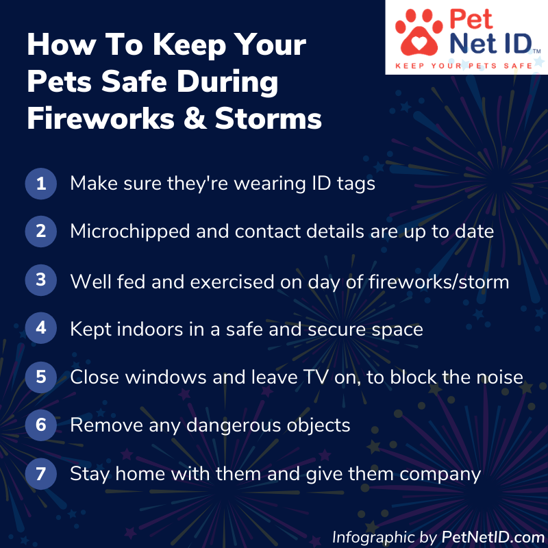 Infographic - How To Keep Your Pets Safe During Fireworks & Storms