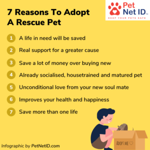 Infographic - 7 reasons to adopt a pet