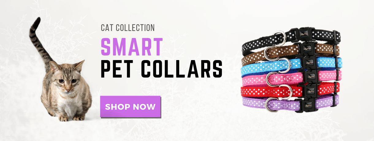 cat-collars-banner